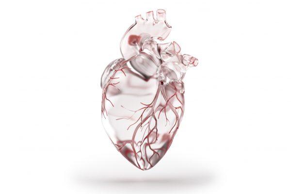 Glas studies - Heart